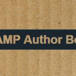 AMP Author Box plugin release