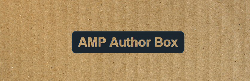 AMP Author Box plugin